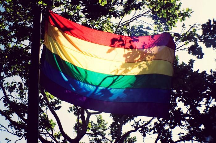 rainbow flag lgtb