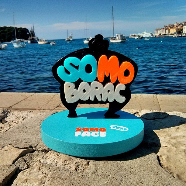 somo borac executive group 2013