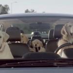 Subaru-Dog-Tested-Campaign meet the barkleys