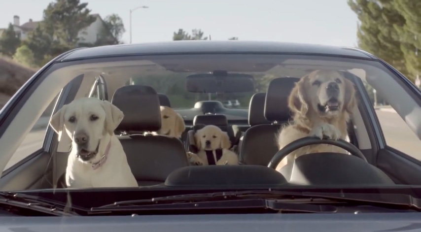 Subaru Dog Tested Campaign meet the barkleys