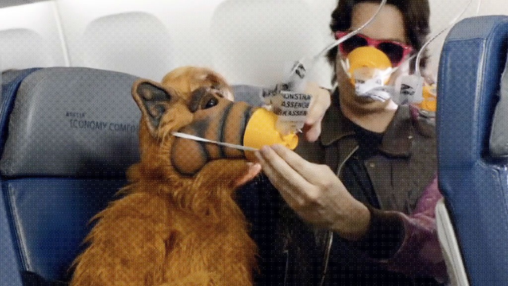 delta 80s safety video alf